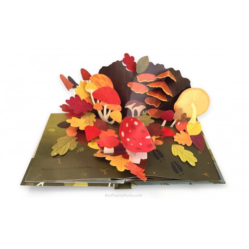 Leaves : An Autumn Pop-Up Book - Фото 2