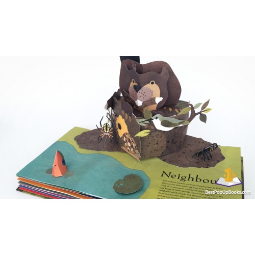 Welcome to the Neighborwood: Pop-up book - Фото 8
